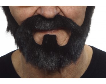 Mustache with beard