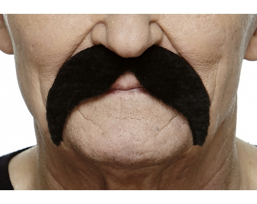 Mustaches (pack of 6 pcs.)